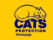 Cat Protection