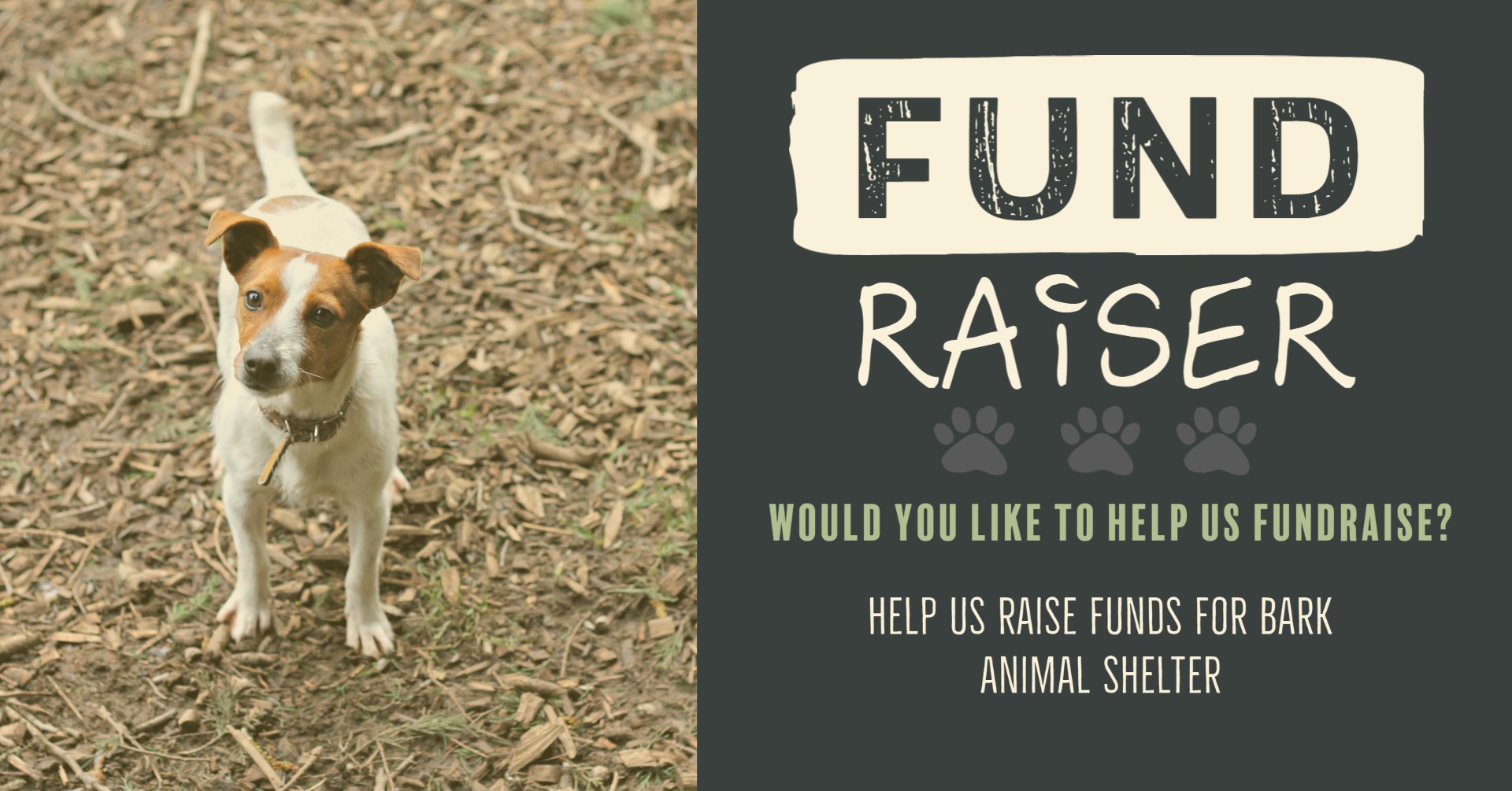 BARK Fund Raise