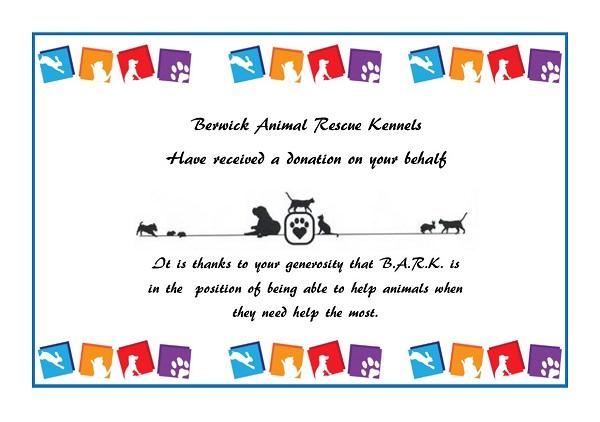BARK-Gift-donation
